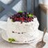 Торт-Павлова Tort-Pavlova